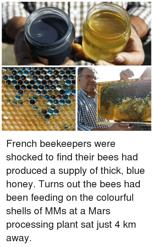 Blue, Mars, and French: French beekeepers were shocked to find their bees had produced a supply of thick, blue honey. Turns out the bees had been feeding on the colourful shells of MMs at a Mars processing plant sat just 4 km away.