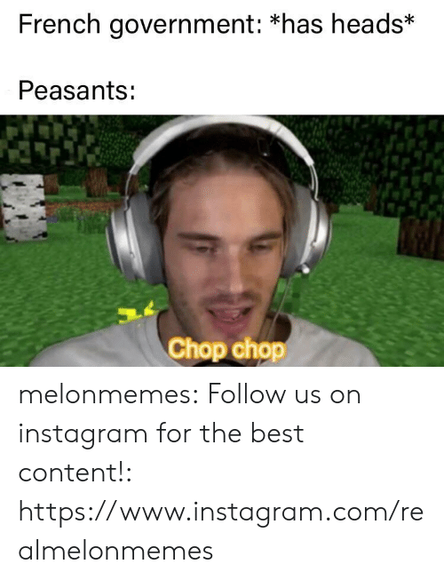 heads: French government: *has heads*  Peasants:  Chop chop melonmemes:  Follow us on instagram for the best content!: https://www.instagram.com/realmelonmemes