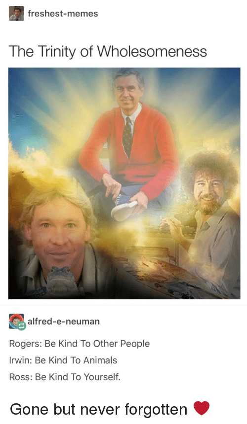 gone but never forgotten: freshest-memes  The Trinity of Wholesomeness  alfred-e-neuman  Rogers: Be Kind To Other People  Irwin: Be Kind To Animals  Ross: Be Kind To Yourself. Gone but never forgotten ❤️