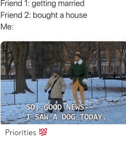 A House: Friend 1: getting married  Friend 2: bought a house  Me:  SO, GOOD NEWS  I SAW A DOG TODAY Priorities 💯