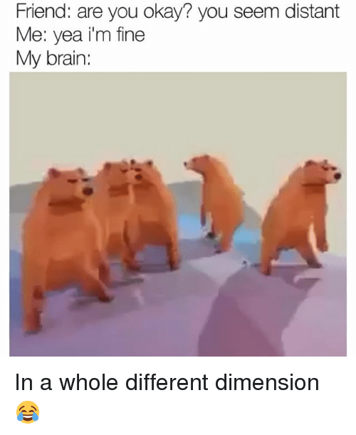 Funny, Brain, and Okay: Friend: are you okay? you seem distant  Me: yea i'm fine  My brain: In a whole different dimension 😂