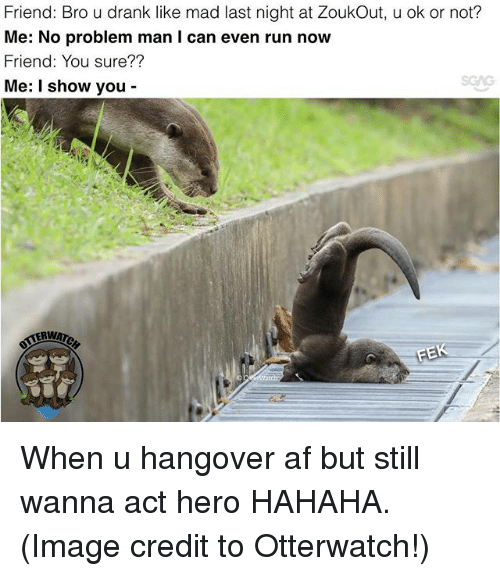 Af, Memes, and Run: Friend: Bro u drank like mad last night at ZoukOut, u ok or not?  Me: No problem man I can even run now  Friend: You sure??  Me: I show you When u hangover af but still wanna act hero HAHAHA. (Image credit to Otterwatch!)