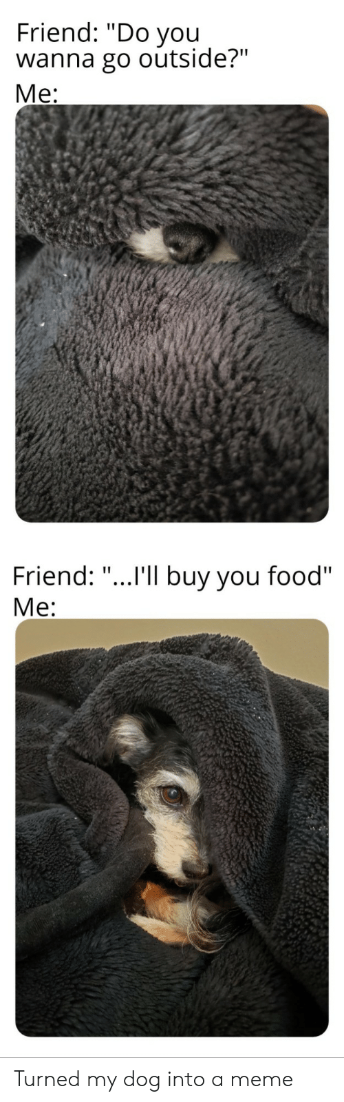 "Food, Meme, and Dog: Friend: ""Do you  wanna go outside?""  Ме:  Friend: ""...I'll buy you food""  Ме: Turned my dog into a meme"