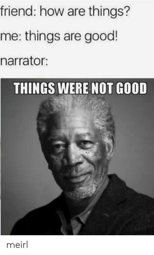 narrator: friend: how are things?  me: things are good!  narrator:  THINGS WERE NOT GOOD meirl