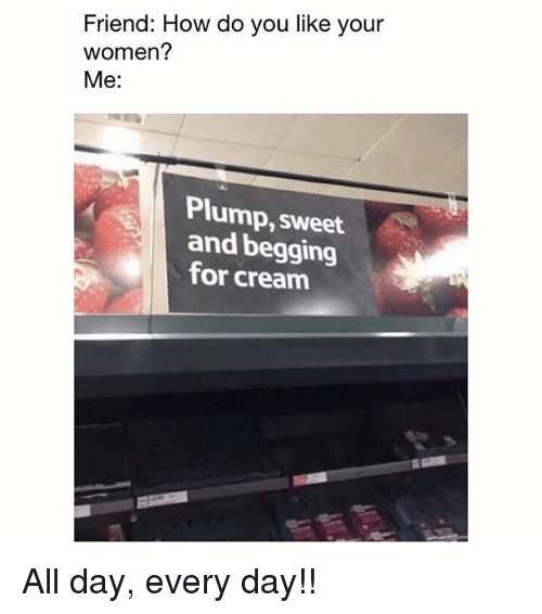 Memes, Women, and 🤖: Friend: How do you like your  women?  Me:  Plump, sweet  and begging  for creanm All day, every day!!