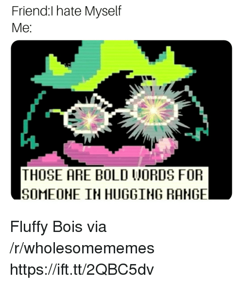 Bold, Friend, and Via: Friend:I hate Myself  Me  THOSE ARE BOLD WORDS FOR  SOMEOHE IN HUGGING RANGE Fluffy Bois via /r/wholesomememes https://ift.tt/2QBC5dv