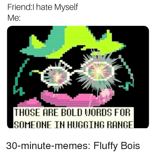 Memes, Tumblr, and Blog: Friend:I hate Myself  Me  THOSE ARE BOLD WORDS FOR  SOMEOHE IN HUGGING RANGE 30-minute-memes:  Fluffy Bois