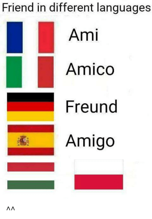 Amie: Friend in different languages  Ami  Amico  Freund  Amigo ^^