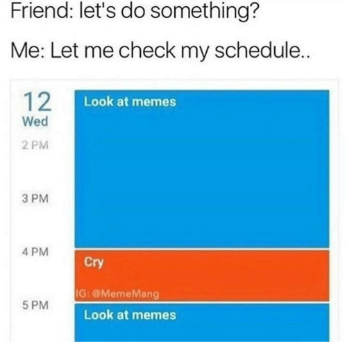Let Me Check: Friend: let's do something?  Me: Let me check my schedule..  12  Look at memes  Wed  2 PM  3 PM  4 PM  Cry  G: @MemeMang  5 PM  Look at memes