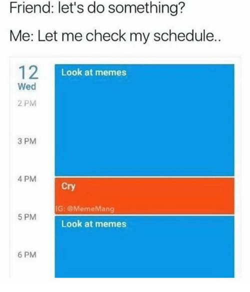 Let Me Check: Friend: let's do something?  Me: Let me check my schedule.  12I  Look at memes  Wed  2 PM  3 PM  4 PM  Cry  IG: @MemeMang  5 PM  Look at memes  6 PM