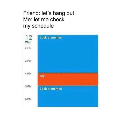Let Me Check: Friend: let's hang out  Me: let me check  my schedule  Look at memes  Wed  2 PM  3 PM  4 PM  Cry  5 PM  Look at memes  6 PM