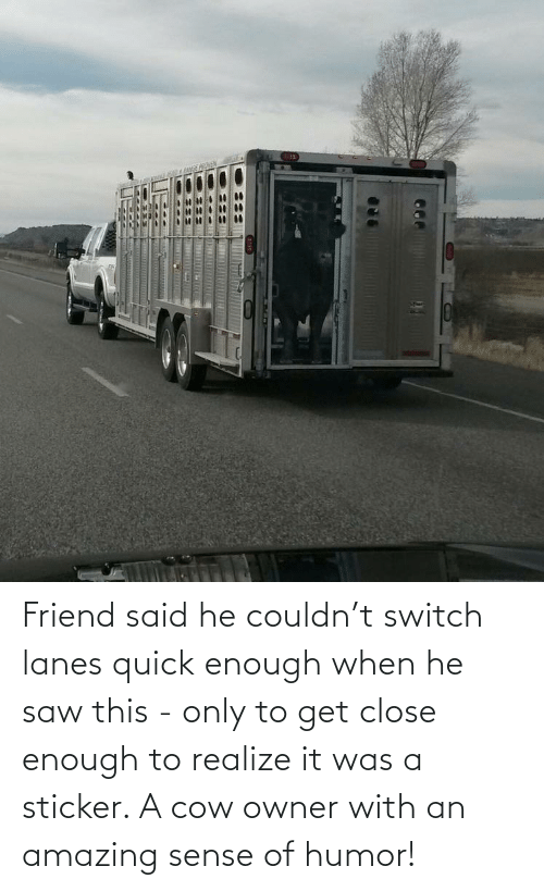 switch: Friend said he couldn't switch lanes quick enough when he saw this - only to get close enough to realize it was a sticker. A cow owner with an amazing sense of humor!