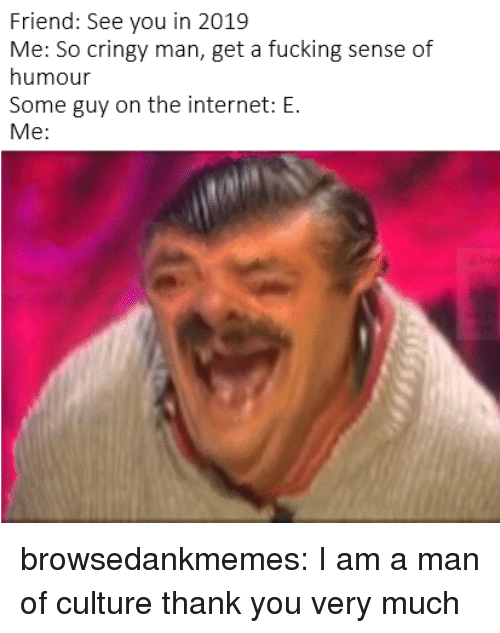 Fucking, Internet, and Tumblr: Friend: See you in 2019  Me: So cringy man, get a fucking sense of  humour  Some guy on the internet: E.  Me: browsedankmemes:  I am a man of culture thank you very much