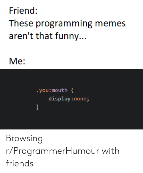 Friends, Funny, and Memes: Friend:  These programming memes  aren't that funny...  Me:  you: mouth  display:none; Browsing r/ProgrammerHumour with friends