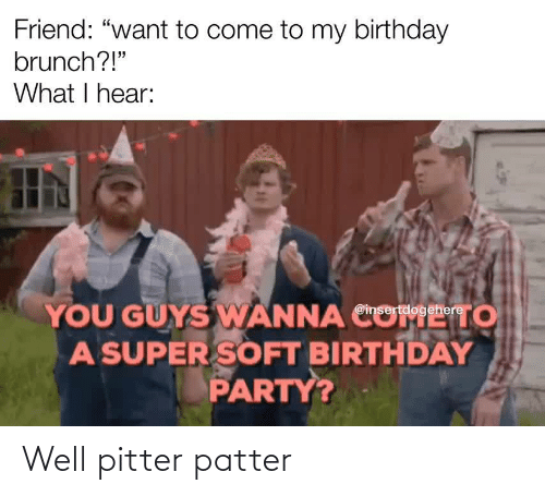 "Birthday: Friend: ""want to come to my birthday  brunch?!""  What I hear:  YOU GUYS WANNA CO  A SUPER SOFT BIRTHDAY  PARTY?  то  @insertdogehere Well pitter patter"