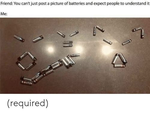 A Picture, Friend, and Picture: Friend: You can't just post a picture of batteries and expect people to understand it  Me: (required)