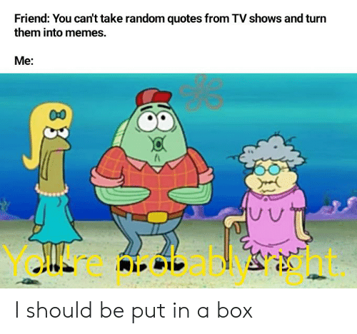 Memes, Reddit, and TV Shows: Friend: You can't take random quotes from TV shows and turn  them into memes.  Me:  00 I should be put in a box