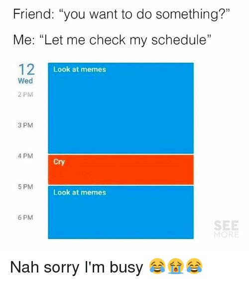 """Dank, Memes, and Sorry: Friend: """"you want to do something?""""  Me: """"Let me check my schedule""""  12I  1)  Look at memes  Wed  2 PM  3 PM  4 PM  Cry  5 PM  Look at memes  6 PM  SEE  MORE Nah sorry I'm busy 😂😭😂"""