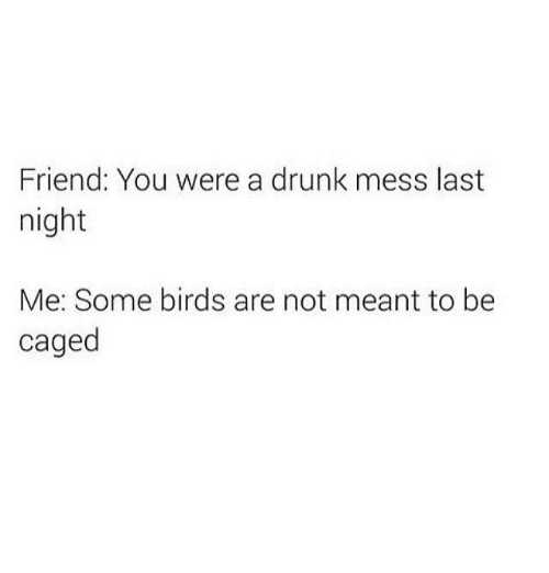 Caged: Friend: You were a drunk mess last  night  Me: Some birds are not meant to be  caged