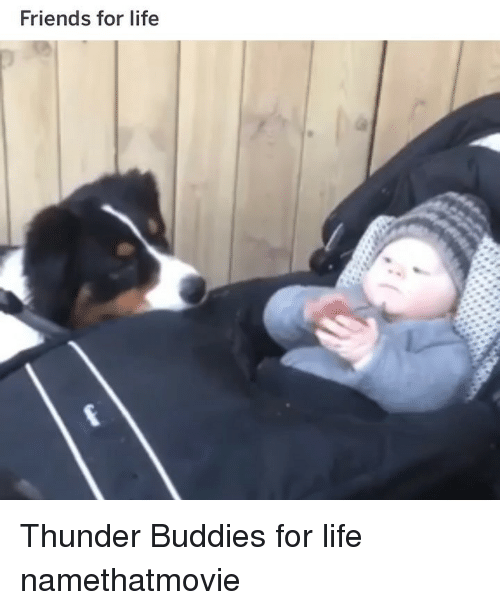 Friends, Funny, and Life: Friends for life Thunder Buddies for life namethatmovie