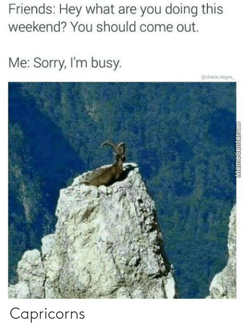capricorns: Friends: Hey what are you doing this  weekend? You should come out.  Me: Sorry, I'm busy.  @chaos.reigns_  Memecenter.com Capricorns