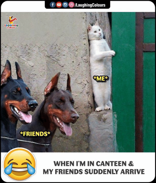 Friends, Indianpeoplefacebook, and Canteen: *FRIENDS*  WHEN I'M IN CANTEEN &  MY FRIENDS SUDDENLY ARRIVE