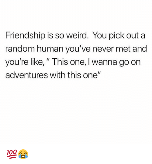 """Dank, Weird, and Friendship: Friendship is so weird. You pick out a  random human you've never met and  you're like,"""" This one, I wanna go on  adventures with this one"""" 💯😂"""