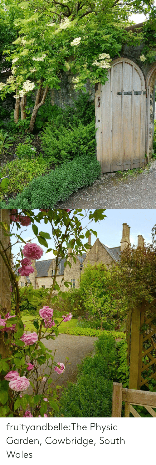 Target, Tumblr, and Blog: fruityandbelle:The Physic Garden, Cowbridge, South Wales