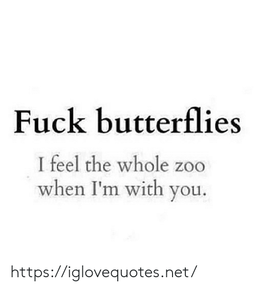 zoo: Fuck butterflies  I feel the whole zoo  when I'm with you. https://iglovequotes.net/