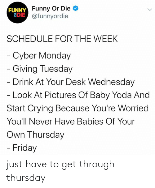 tuesday: FUNNY Funny Or Die  EDIE @funnyordie  SCHEDULE FOR THE WEEK  - Cyber Monday  - Giving Tuesday  - Drink At Your Desk Wednesday  - Look At Pictures Of Baby Yoda And  Start Crying Because You're Worried  You'll Never Have Babies Of Your  Own Thursday  - Friday just have to get through thursday