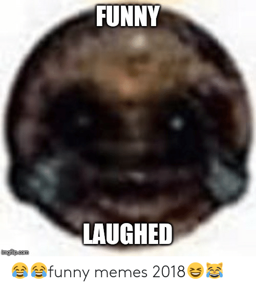 Memes 2018: FUNNY  LAUGHED  imgflip.com 😂😂funny memes 2018😆😹