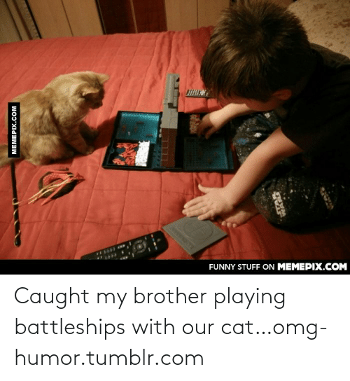 Caught My: FUNNY STUFF ON MEMEPIX.COM  MEMEPIX.COM  LLLL  WANT Caught my brother playing battleships with our cat…omg-humor.tumblr.com