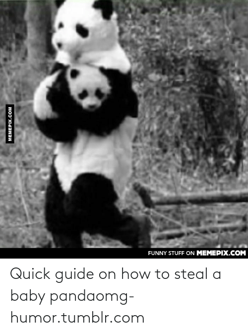 How To Steal: FUNNY STUFF ON MEMEPIX.COM  MEMEPIX.COM Quick guide on how to steal a baby pandaomg-humor.tumblr.com