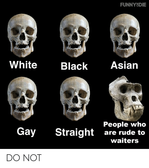 Waiters: FUNNYSDIE  White  Black Asian  People who  Gay Straight are rude to  waiters DO NOT