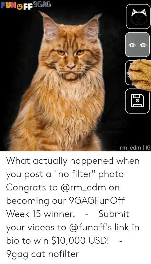 "9gag, Memes, and Videos: FUNOFF 9GAG  0  rm_edm IG What actually happened when you post a ""no filter"" photo⠀ Congrats to @rm_edm on becoming our 9GAGFunOff Week 15 winner!⠀ -⠀ Submit your videos to @funoff's link in bio to win $10,000 USD!⠀ -⠀ 9gag cat nofilter"