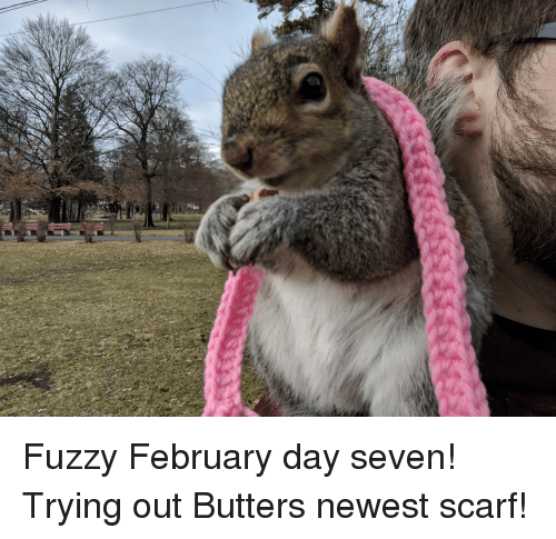 Her, Seven, and Day: Fuzzy February day seven! Trying out Butters newest scarf!