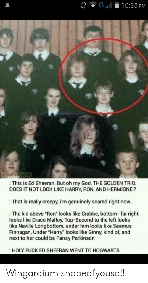 "Ed Sheeran: G  10:35 PM  TREMET MPTURE cOM  This is Ed Sheeran. But oh my God, THE GOLDEN TRIO.  DOES IT NOT LOOK LIKE HARRY, RON, AND HERMIONE!?  That is really creepy, i'm genuinely scared right now...  The kid above ""Ron"" looks like Crabbe, bottom- far right  looks like Draco Malfoy, Top-Second to the left looks  like Neville Longbottom, under him looks like Seamus  Finnagan, Under ""Harry"" looks like Ginny, kind of, and  next to her could be Pansy Parkinson  HOLY FUCK ED SHEERAN WENT TO HOGWARTS Wingardium shapeofyousa!!"