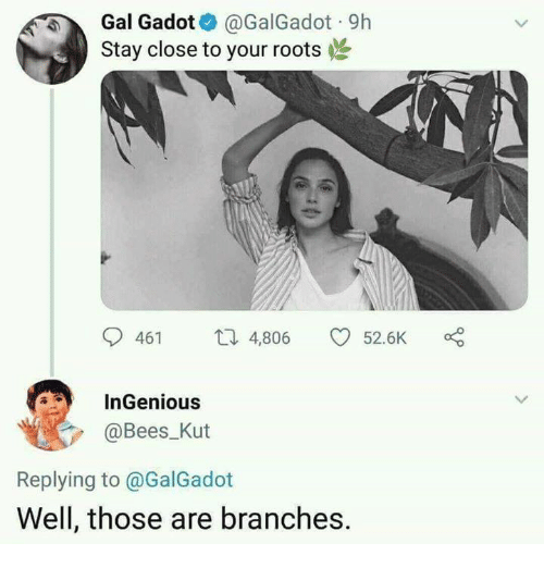 ingenious: Gal Gadot@GalGadot 9h  Stay close to your roots  461 4,806 52.6K  InGenious  @Bees Kut  Replying to @GalGadot  Well, those are branches.