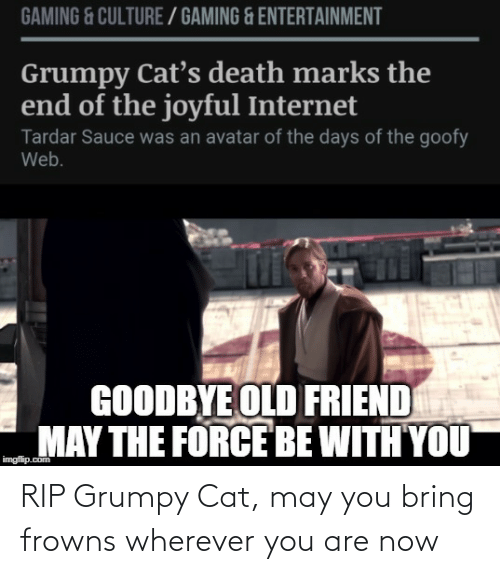 Tardar Sauce: GAMING & CULTURE / GAMING & ENTERTAINMENT  Grumpy Cat's death marks the  end of the joyful Internet  Tardar Sauce was an avatar of the days of the goofy  Web.  GOODBYE OLD FRIEND  MAY THE FORCE BE WITH YOU  imgflip.com RIP Grumpy Cat, may you bring frowns wherever you are now