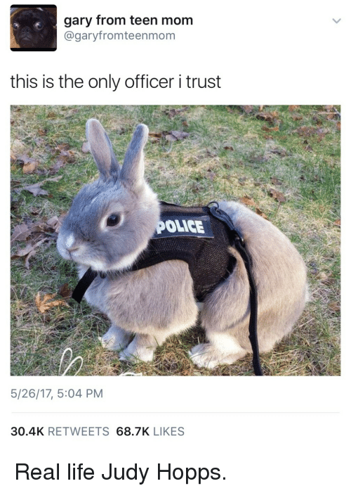 Judy Hopps: gary from teen mom  @garyfromteenmom  this is the only officer i trust  OLICE  5/26/17, 5:04 PM  30.4K RETWEETS 68.7K LIKES <p>Real life Judy Hopps.</p>