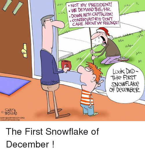 Look Dad: GARY GARY MCCOY ORG  CAGLECARTOONS COM  e NOT MY PRESIDENT!  WE DEMAND AIS/HR.  DONN CONSERVATINeS DONT  CARE APOATMY FEELiNGs  Mt  Look DAD  THe FIRST  SNOWFLAke  OF DECEMBER. The First Snowflake of December !