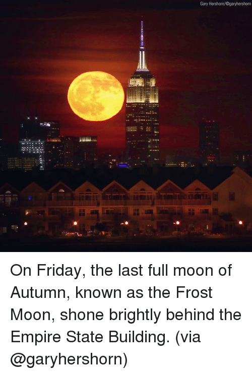 Shone: Gary Hershorn/@garyhershorr On Friday, the last full moon of Autumn, known as the Frost Moon, shone brightly behind the Empire State Building. (via @garyhershorn)
