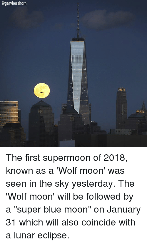 """Memes, Blue, and Blue Moon: @garyhershorn The first supermoon of 2018, known as a 'Wolf moon' was seen in the sky yesterday. The 'Wolf moon' will be followed by a """"super blue moon"""" on January 31 which will also coincide with a lunar eclipse."""