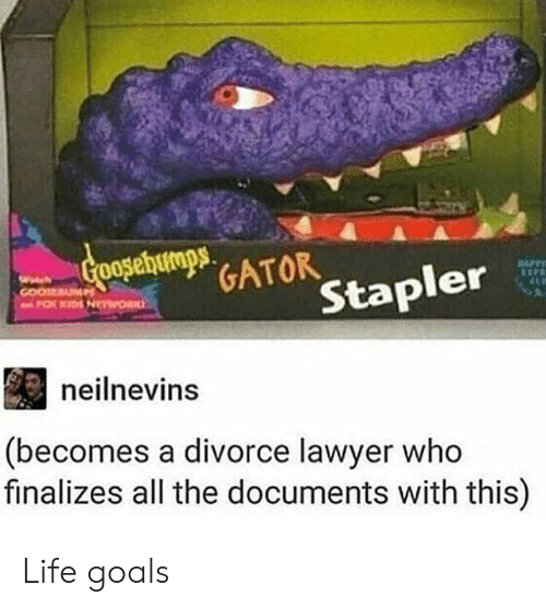 life goals: GATOR  er  Stap  neilnevins  (becomes a divorce lawyer who  finalizes all the documents with this) Life goals