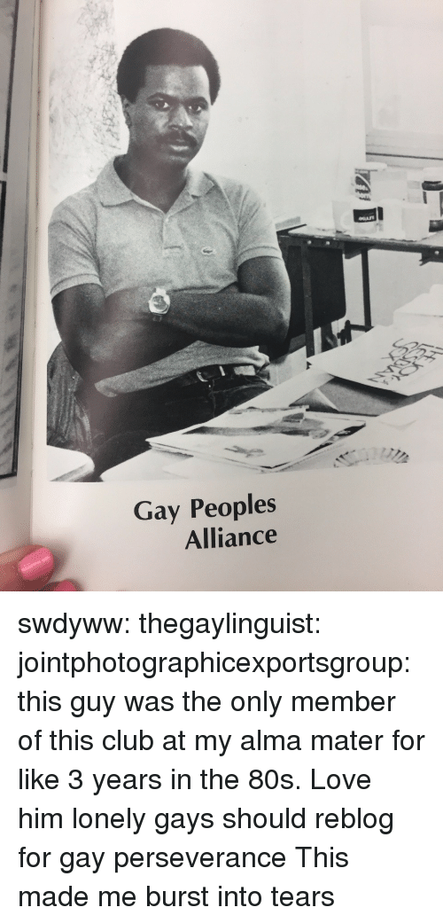 Perseverance: Gay Peoples  Alliance swdyww:  thegaylinguist:  jointphotographicexportsgroup: this guy was the only member of this club at my alma mater for like 3 years in the 80s. Love him  lonely gays should reblog for gay perseverance   This made me burst into tears
