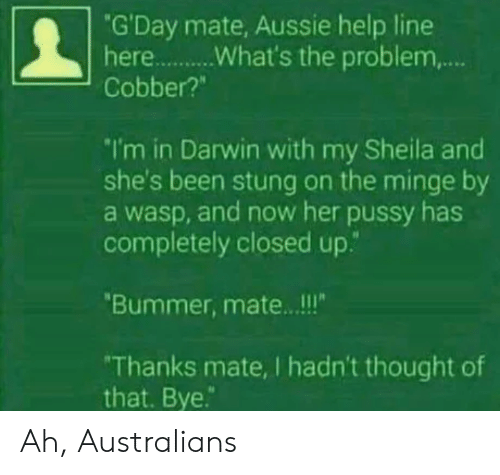 "minge: ""G'Day mate, Aussie help line  Cobber?""  I'm in Darwin with my Sheila and  she's been stung on the minge by  a wasp, and now her pussy has  completely closed up.""  Bummer, mate.. .!!  Thanks mate, I hadn't thought of  that. Bye. Ah, Australians"