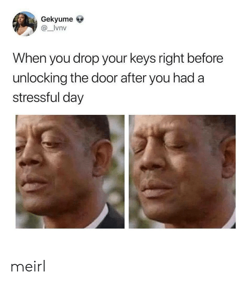 MeIRL, Day, and You: Gekyume  @_lvnv  When you drop your keys right before  unlocking the door after you had a  stressful day meirl