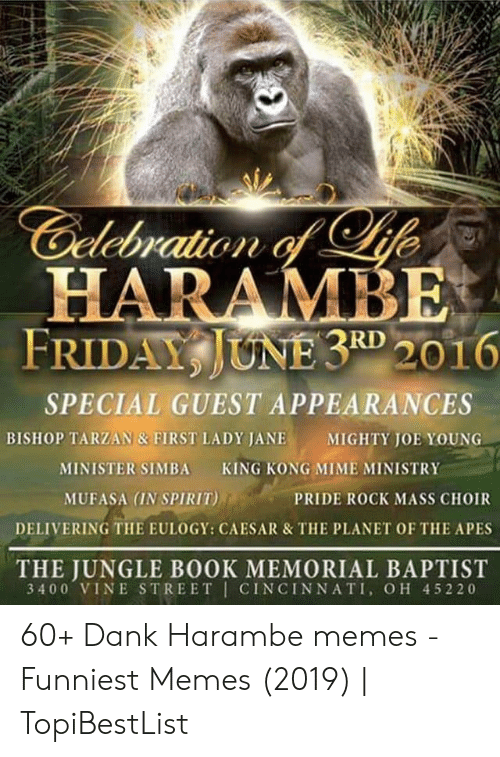 Memes Funniest: Gelebration of ife  HARAMBE  FRIDAY JUNE 3RD 2016  SPECIAL GUEST APPEARANCES  BISHOP TARZAN & FIRST LADY JANE  MIGHTY JOE YOUNG  KING KONG MIME MINISTRY  MINISTER SIMBA  MUFASA (IN SPIRIT)  PRIDE ROCK MASS CHOIR  DELIVERING THE EULOGY: CAESAR & THE PLANET OF THE APES  THE JUNGLE BOOK MEMORIAL BAPTIST  3400 VINE STREET CINCINNATI, OH 45220 60+ Dank Harambe memes - Funniest Memes (2019) | TopiBestList