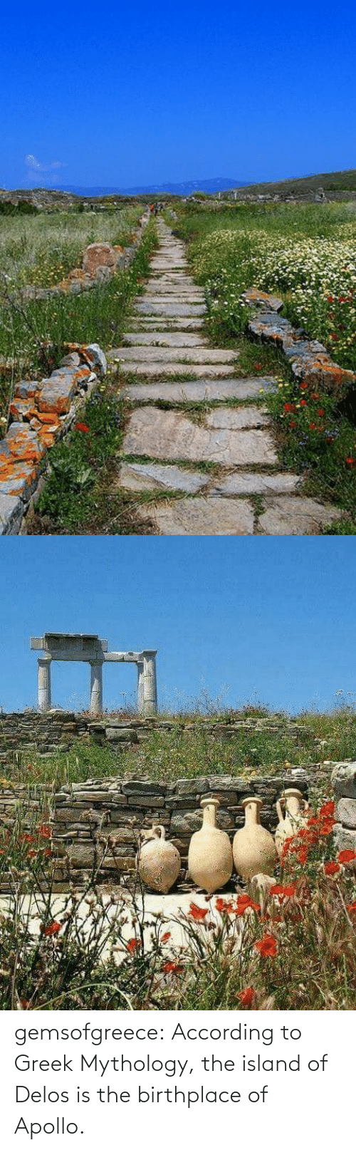 According: gemsofgreece: According to Greek Mythology, the island of Delos is the birthplace of Apollo.