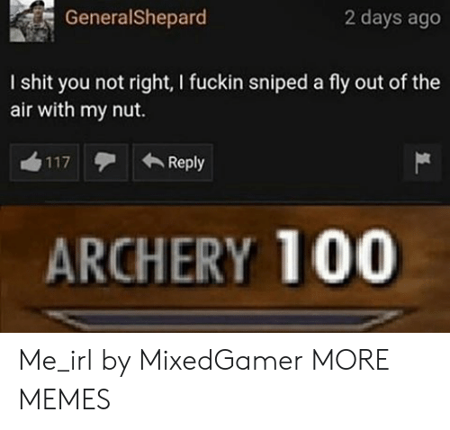 Dank, Memes, and Shit: GeneralShepard  2 days ago  I shit you not right, I fuckin sniped a fly out of the  air with my nut.  Reply  117  ARCHERY 100 Me_irl by MixedGamer MORE MEMES